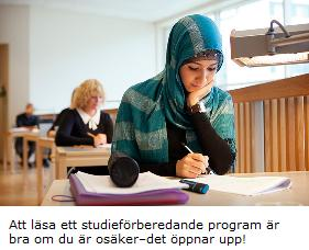 studiefrb